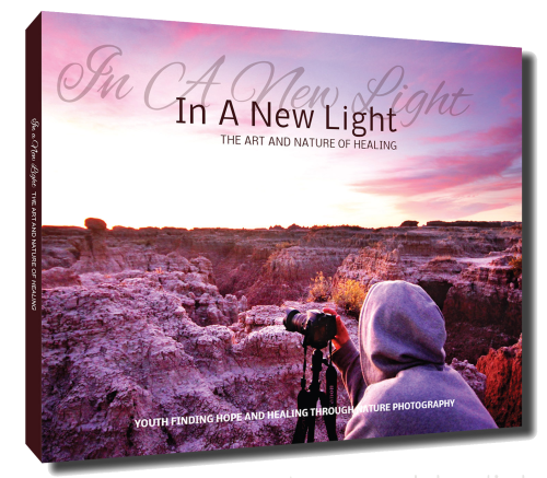 In a New Light : The Art and Nature of Healing